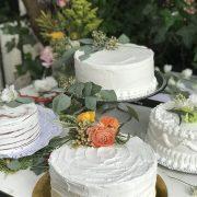torta 23